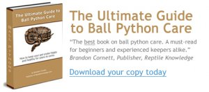 Ball Python Care Book