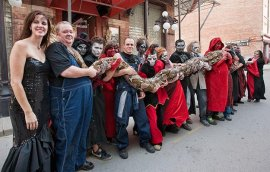 longest-snake-medusa-guinness-world-records-2