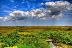 Storm clouds over the Everglades. © slack12 / Flickr