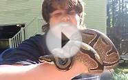 Handling my pet ball python outside